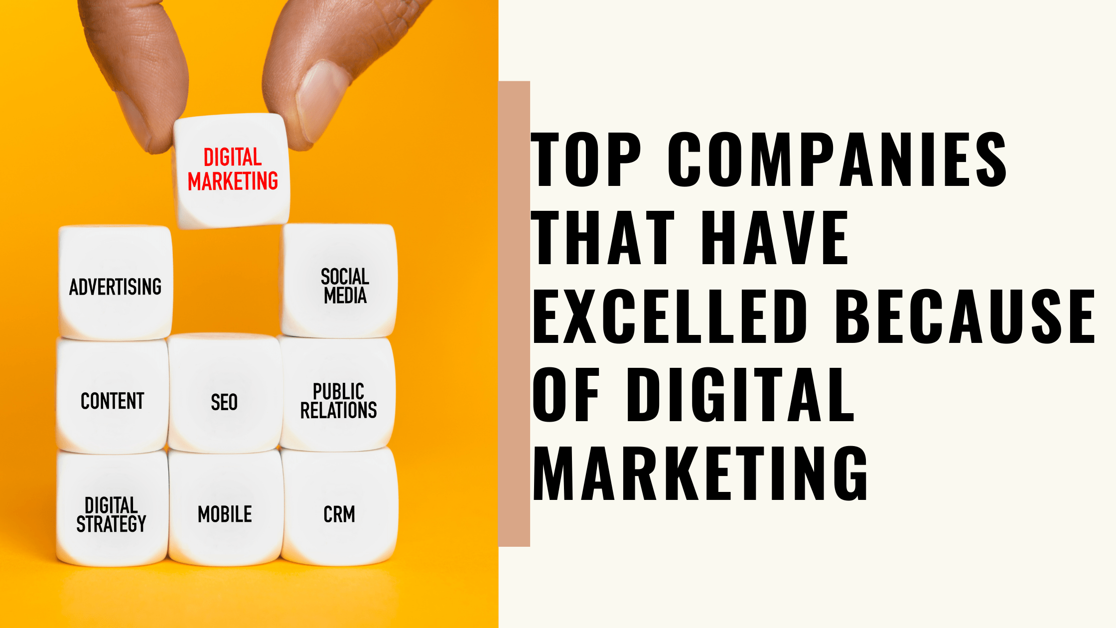 Top Companies That Have Excelled Because of Digital Marketing